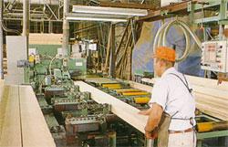 木村木材工業のモノづくり南工場