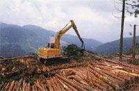 山林環境緑化部